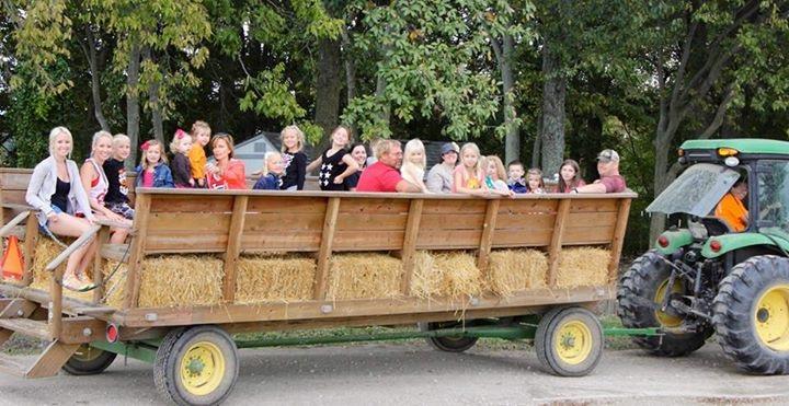 Corn Maze-Wagon Ride