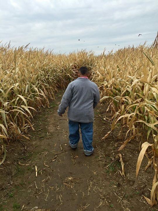 Corn Maze -Walking