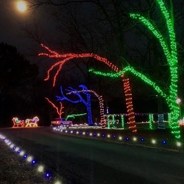 <strong>Christmas Lights</strong>