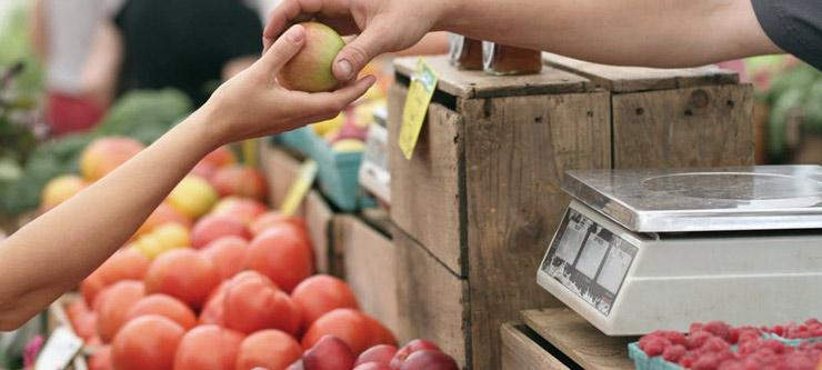 farmers market header