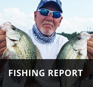 Fishing – The City of Carlyle, Illinois | Carlyle Lake, Illinois